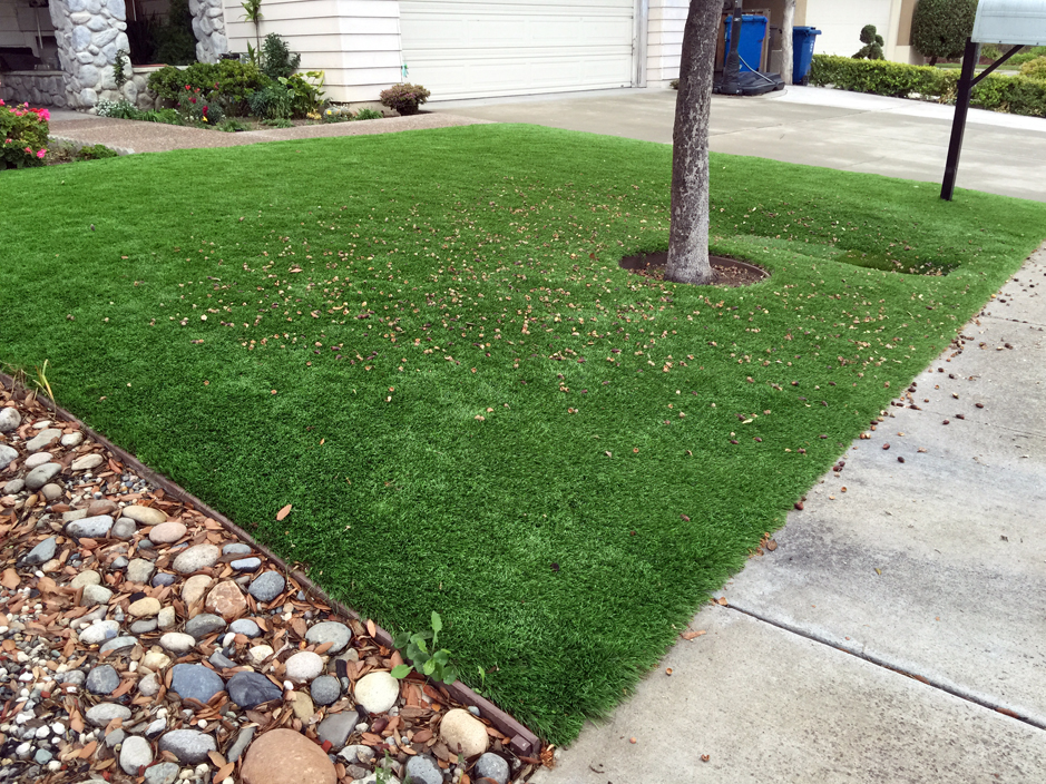 Artificial Grass Naco Arizona Landscape Design Small Front Yard Landscaping : sample-of-garden-design - designwebi.com