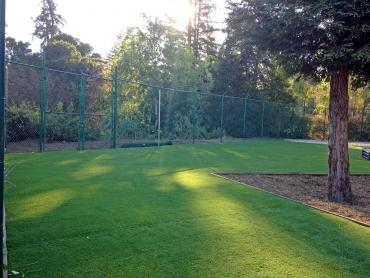 Artificial Grass Photos: Artificial Grass Carpet Payson, Arizona Home And Garden, Recreational Areas