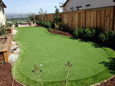 Artificial Grass Photos: Artificial Grass Installation Palominas, Arizona Lawn And Landscape, Backyard Ideas