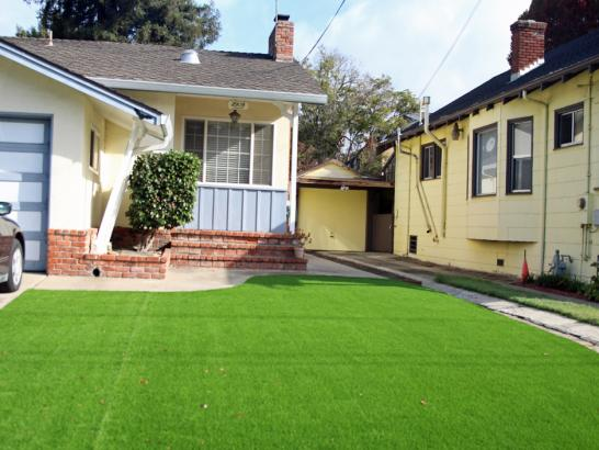 Artificial Grass Photos: Artificial Grass Installation San Miguel, Arizona Gardeners, Front Yard Landscape Ideas