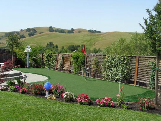 Artificial Grass Photos: Artificial Grass Queen Valley, Arizona Putting Green Carpet, Small Backyard Ideas