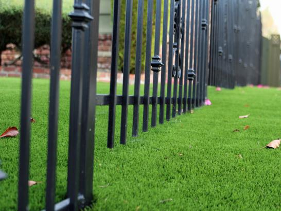 Artificial Grass Photos: Artificial Lawn Canyon Day, Arizona Landscape Ideas, Front Yard Landscaping