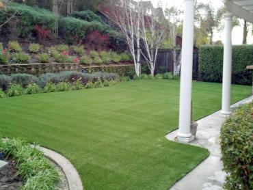 Artificial Grass Photos: Artificial Turf Cost Summit, Arizona Pictures Of Dogs, Backyard
