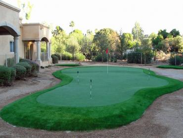Artificial Grass Photos: Artificial Turf Cost Tanque Verde, Arizona Putting Green Turf, Backyards