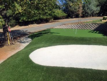 Artificial Grass Photos: Artificial Turf Eloy, Arizona Best Indoor Putting Green, Front Yard