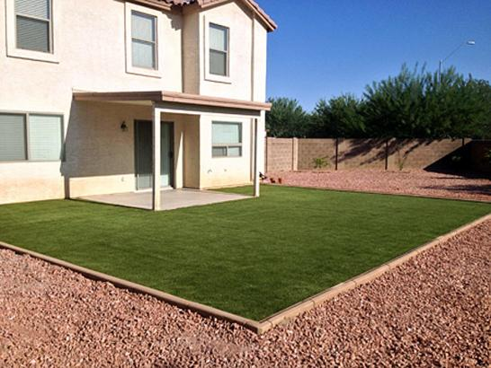 Artificial Grass Photos: Artificial Turf Installation Buckeye, Arizona Gardeners, Small Backyard Ideas