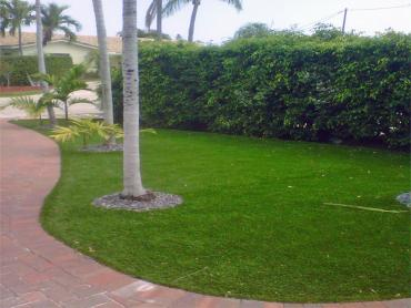 Artificial Grass Photos: Artificial Turf Installation Clay Springs, Arizona Lawns, Front Yard Landscaping