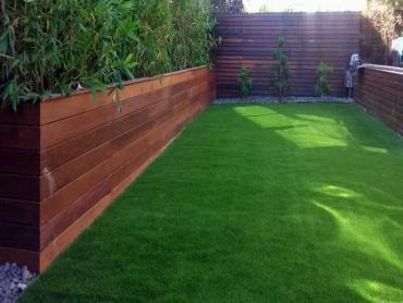 Artificial Grass Photos: Artificial Turf Installation Wilhoit, Arizona Lawns, Backyard