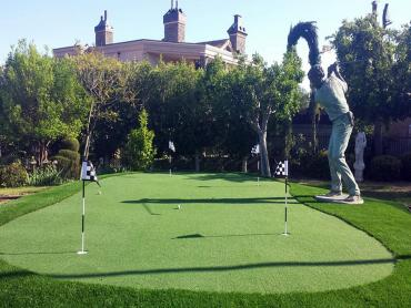 Artificial Grass Photos: Artificial Turf Miami, Arizona Landscaping, Backyard Design