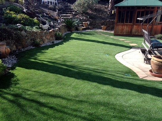 Artificial Grass Photos: Artificial Turf Rye, Arizona Rooftop, Backyard Garden Ideas