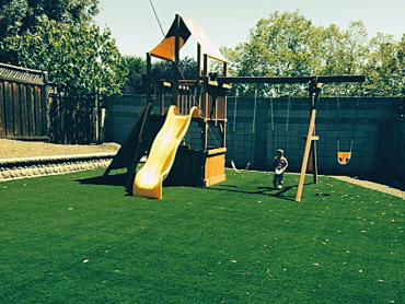 Artificial Grass Photos: Artificial Turf Saint David, Arizona Landscape Photos, Beautiful Backyards
