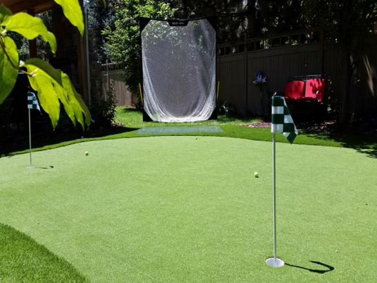 Artificial Grass Photos: Artificial Turf White Mountain Lake, Arizona Diy Putting Green, Backyard Garden Ideas
