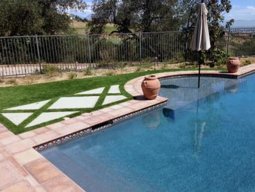 Artificial Grass Photos: Best Artificial Grass Christopher Creek, Arizona Landscaping, Natural Swimming Pools