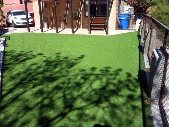 Artificial Grass Photos: Best Artificial Grass Tonopah, Arizona Landscape Design, Backyard Landscape Ideas