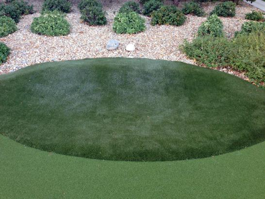 Artificial Grass Photos: Fake Grass Carpet Aztec, Arizona Design Ideas