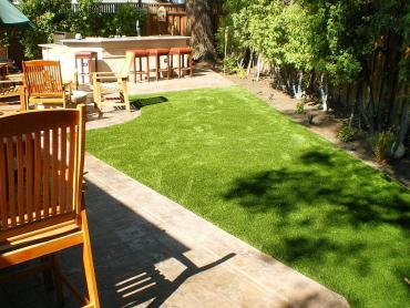 Artificial Grass Photos: Fake Grass Carpet Queen Creek, Arizona Landscape Design, Backyard Landscaping
