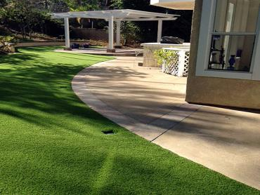 Artificial Grass Photos: Fake Grass Carpet Tonto Basin, Arizona Pet Turf, Front Yard Ideas