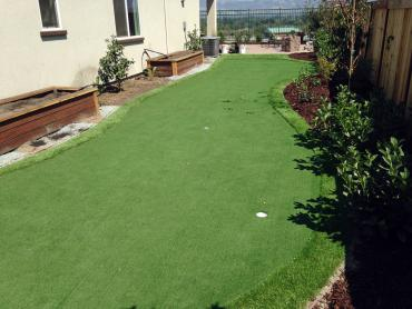 Artificial Grass Photos: Fake Grass Carpet Tucson Estates, Arizona Backyard Deck Ideas, Backyard Landscape Ideas
