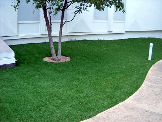 Artificial Grass Photos: Fake Grass Dewey-Humboldt, Arizona Rooftop, Commercial Landscape