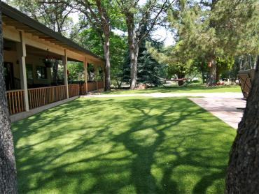 Artificial Grass Photos: Fake Grass Wellton, Arizona Design Ideas, Backyard Design