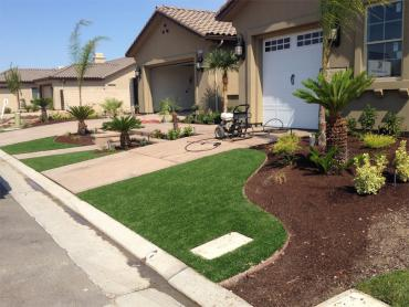 Artificial Grass Photos: Fake Lawn East Fork, Arizona Backyard Playground, Front Yard