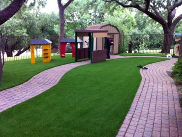 Artificial Grass Photos: Fake Lawn Pinal, Arizona Roof Top, Commercial Landscape