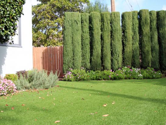 Artificial Grass Photos: Fake Turf Bowie, Arizona Landscape Photos, Front Yard Landscaping Ideas