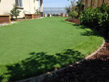 Fake Turf Gila Crossing, Arizona Landscape Ideas, Backyard Design artificial grass