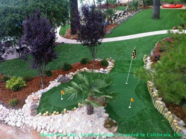 Artificial Grass Photos: Fake Turf Tucson, Arizona Putting Green Flags, Backyard Design