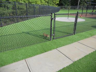 Artificial Grass Photos: Faux Grass Lake of the Woods, Arizona Landscape Design, Parks