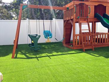 Grass Carpet Dragoon, Arizona Home And Garden, Backyard Garden Ideas artificial grass
