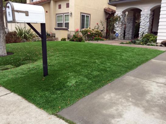 Artificial Grass Photos: Grass Installation Gold Camp, Arizona Landscaping, Front Yard Design