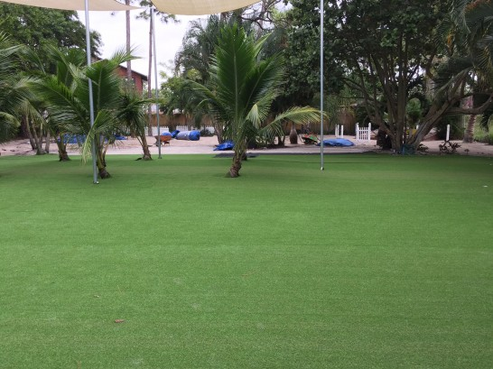 Artificial Grass Photos: Grass Installation Joseph City, Arizona Lawn And Landscape, Commercial Landscape