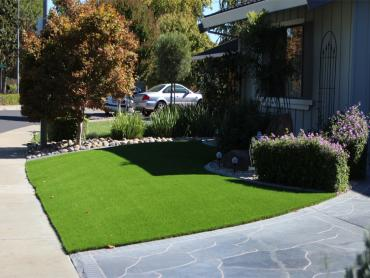 Artificial Grass Photos: Grass Installation Tolleson, Arizona City Landscape, Front Yard Landscaping Ideas
