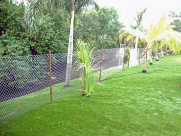 Artificial Grass Photos: How To Install Artificial Grass Big Park, Arizona Home And Garden, Backyard Garden Ideas