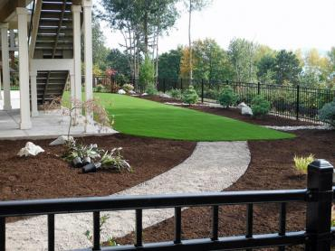 Artificial Grass Photos: Installing Artificial Grass Beyerville, Arizona Landscape Photos, Backyard Landscaping