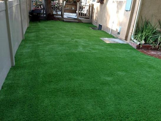 Artificial Grass Photos: Lawn Services Anegam, Arizona Lawn And Garden, Small Backyard Ideas