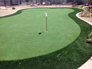 Artificial Grass Photos: Lawn Services Douglas, Arizona Lawns, Beautiful Backyards