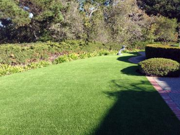 Artificial Grass Photos: Lawn Services Greer, Arizona Rooftop, Front Yard Landscaping