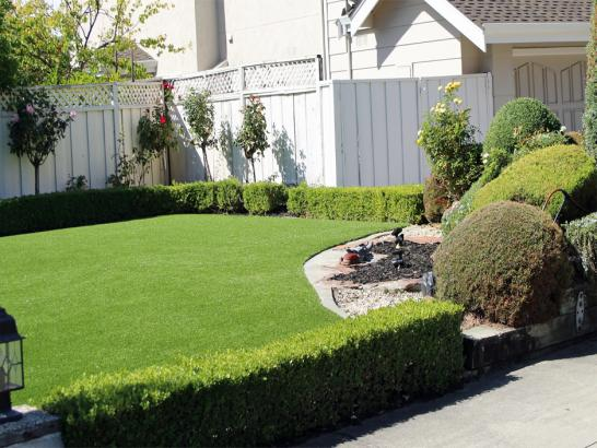 Artificial Grass Photos: Lawn Services Sierra Vista, Arizona Landscaping, Front Yard Landscape Ideas