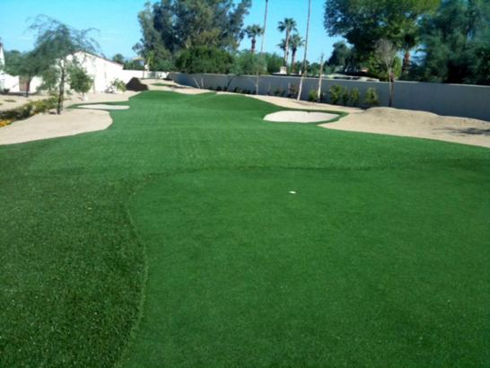 Artificial Grass Photos: Outdoor Carpet Casas Adobes, Arizona Gardeners