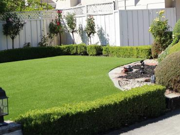 Artificial Grass Photos: Outdoor Carpet Sevenmile, Arizona Landscape Rock, Backyard Ideas