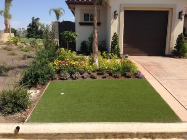 Artificial Grass Photos: Plastic Grass Campo Bonito, Arizona Landscape Photos, Front Yard Landscaping Ideas