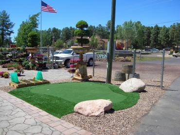 Artificial Grass Photos: Plastic Grass Springerville, Arizona Outdoor Putting Green, Commercial Landscape