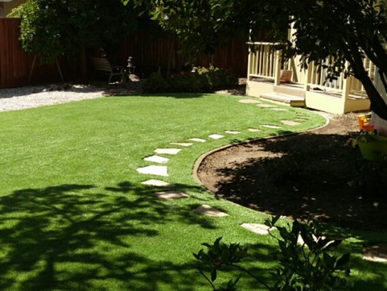 Plastic Grass Three Points, Arizona Gardeners, Backyard Ideas artificial grass