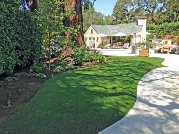 Artificial Grass Photos: Synthetic Grass Cost Cave Creek, Arizona Landscaping Business, Commercial Landscape