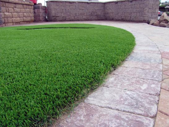 Artificial Grass Photos: Synthetic Grass Mesa del Caballo, Arizona Pet Turf, Front Yard Landscaping Ideas