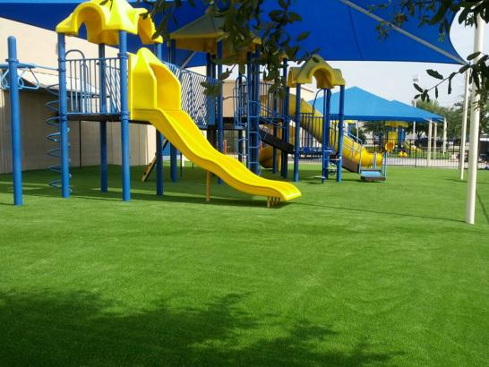 Artificial Grass Photos: Synthetic Lawn Alpine, Arizona Backyard Playground, Commercial Landscape