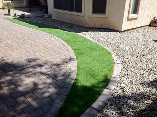 Artificial Grass Photos: Synthetic Lawn Citrus Park, Arizona Lawns, Front Yard Landscaping Ideas