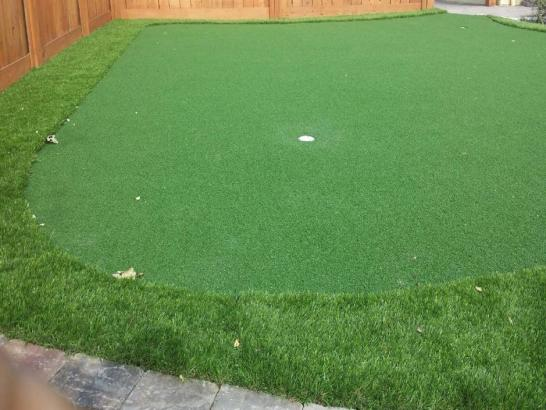 Artificial Grass Photos: Synthetic Lawn San Tan Valley, Arizona Garden Ideas